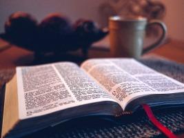 Thánh Vịnh tạ ơn | Bài Giảng của ĐGM Phêrô Nguyễn Khảm