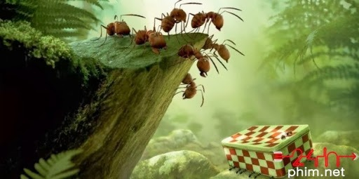 Minuscule-The-Valley-of-Lost-Ants-e