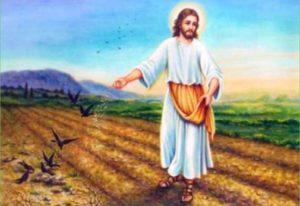 Tuần 92: Tin Mừng theo Thánh Matthêu (Chương 13-19)