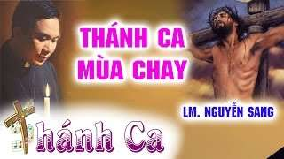 Thánh Mùa Chay Thánh Hay Nhất – Lm. JB Nguyễn Sang
