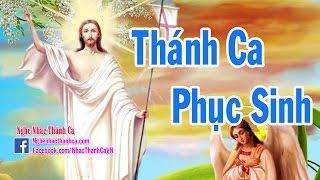 Thánh Ca Phục Sinh | Những Bài Hát Thánh Ca Phục Sinh Hay Nhất (Phần 3)