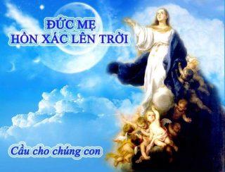 Tín điều Đức Mẹ Hồn Xác Lên Trời